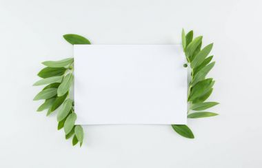Blank card with green leaves