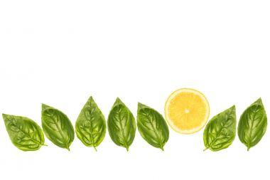 basil leaves and lemon slice