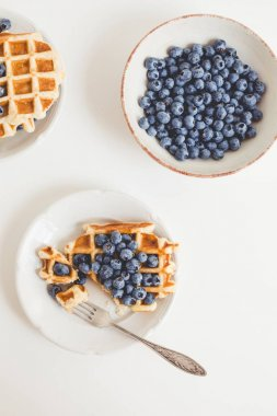 composition of waffles and blueberries