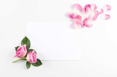pink roses and blank card