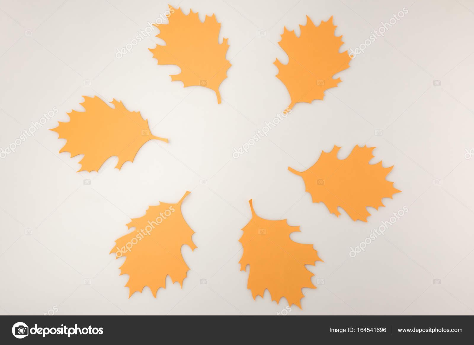 round frame of oak leaves u2014 stock photo antonmatyukha 164541696