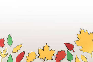 composition of drawn autumnal leaves