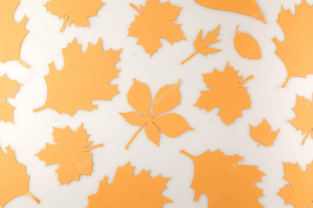Composition of various autumn leaves isolated on white stock vector