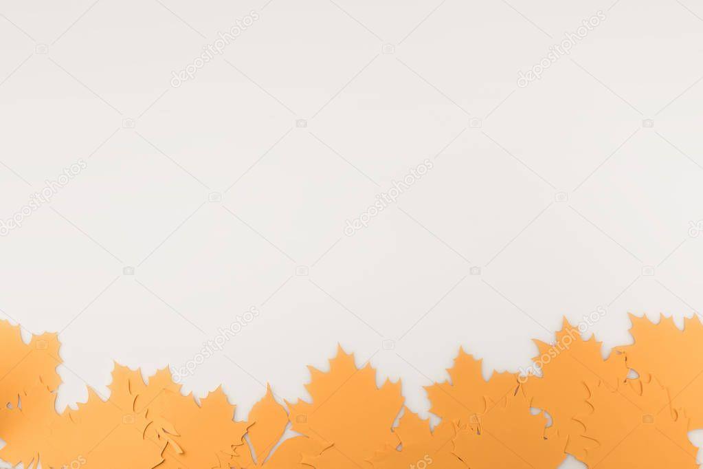border frame of autumnal leaves
