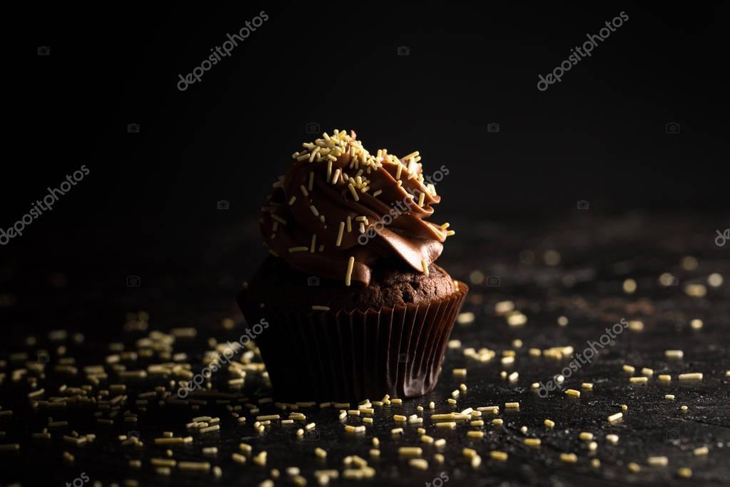 chocolate cupcake with sprinkles