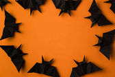 Photo halloween frame with bats