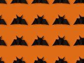 Photo bats