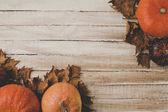 zucche e foglie secche