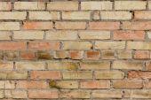 Fotografie prázdné cihlová zeď