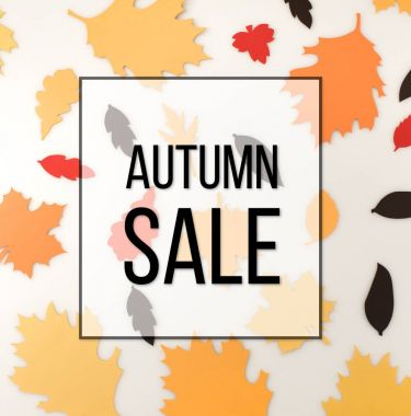 Various autumnal leaves, autumn sale concept stock vector