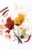 lžičky s paprikou a kari
