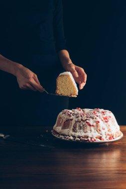 piece of traditional christmas cake
