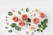 růžové květy růže a lístky