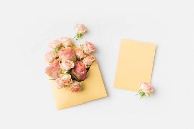 pink roses in envelope