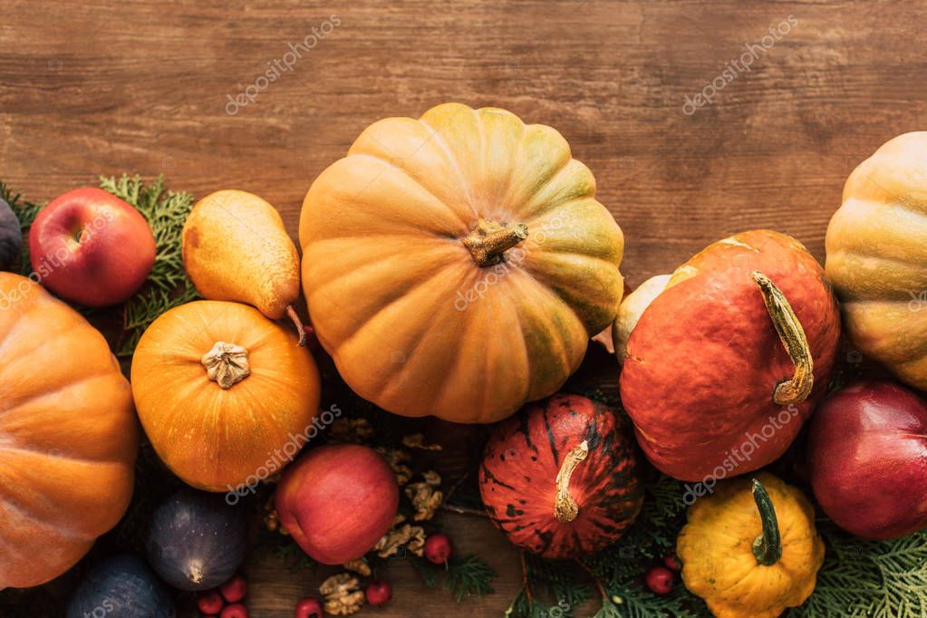 top view of autumn harvested fruits and vegetables