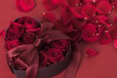 close up view of roses in heart shaped gift box with ribbon and petals isolated on red, st valentines day holiday concept