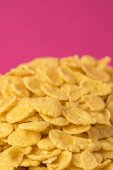 Photo selective focus of sweet tasty corn flakes isolated on pink