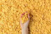 Photo top view of female hand holding crunchy organic corn flakes