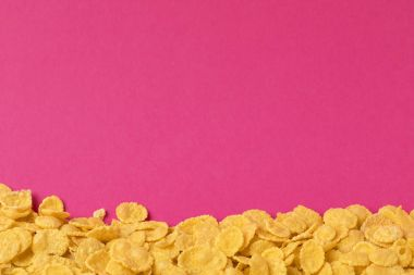 Close-up view of delicious crunchy corn flakes isolated on pink background stock vector