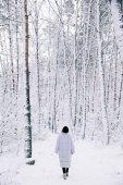 havas erdei séta nő hátulnézete