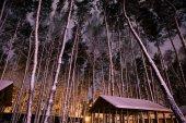 Fotografie dřevěná chata v zasněženém lese v noci