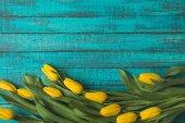pohled shora krásný žlutý Tulipán květin na tyrkysové dřevěný povrch
