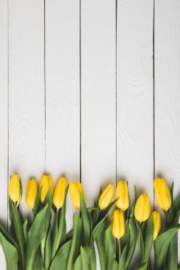 top view of beautiful blooming yellow tulips on white wooden surface