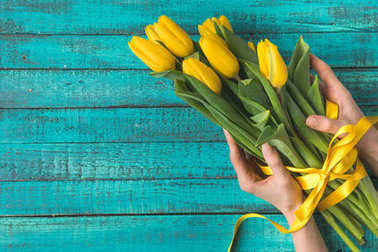 top view of hands holding beautiful yellow tulips with ribbon