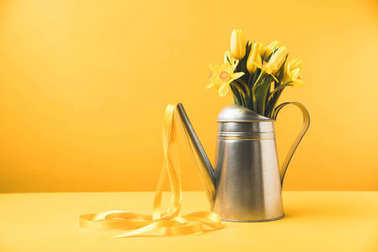 beautiful yellow spring flowers in watering can with ribbon on yellow