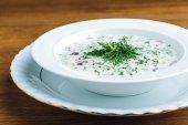 Detailní pohled chutné studené letní polévka s jogurtem a zeleninou