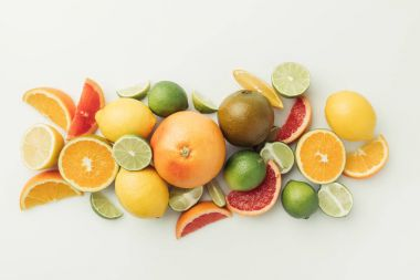 Assorted raw citruses isolated on white background stock vector
