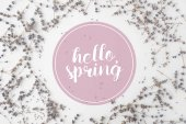 Fotografie top view of HELLO SPRING lettering with round frame of lavender flowers on white tabletop