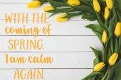 Fotografie pohled shora na krásné kvetoucí žluté tulipány bílé dřevěné povrchu s jarní fráze