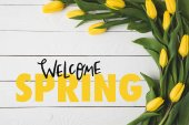top view of beautiful blooming yellow tulips and WELCOME SPRING lettering on white wooden surface