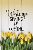 pohled shora na krásné kvetoucí žluté tulipány a Wake Up. Jaro se blíží písmem na bílý dřevěný povrch