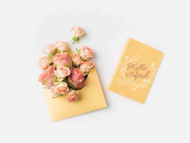 beautiful pink roses in envelope and HELLO APRIL card isolated on white