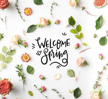 pink flowers, petals and figs aroung WELCOME SPRING lettering isolated on white