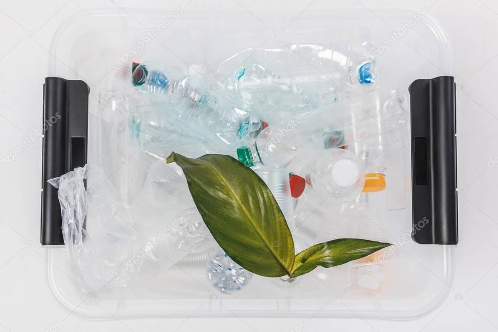 top view of container with plastic bottles and green leaves isolated on white, recycling concept