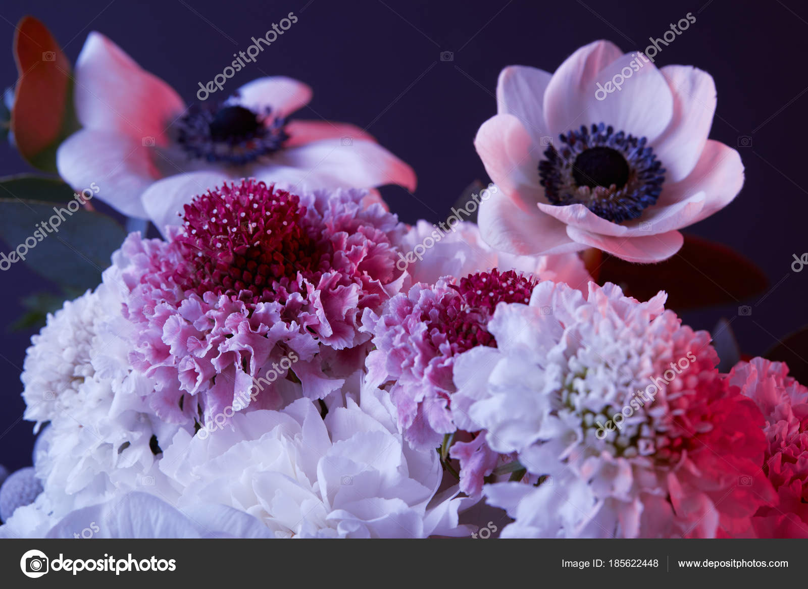 Bouquet Different White Pink Flowers Dark Stock Photo