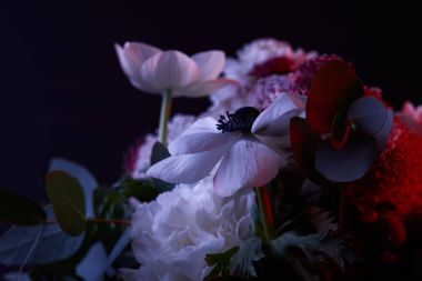 bouquet of different flowers with red light on dark