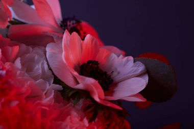 bouquet of flowers in red light on dark