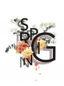 Fotografie kreativní koláž s květinovou kytici na bílém se symbolem jara