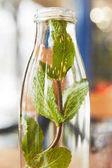 Erba della menta verde in bottiglia di vetro con acqua