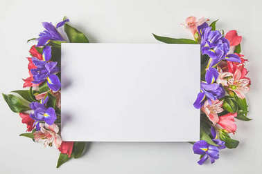 Top view of blank card and beautiful tender flowers on grey stock vector