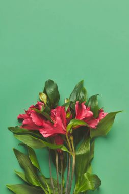 top view of bunch of beautiful Alstroemeria flowers on green, mothers day concept