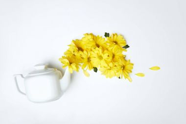 Pouring yellow daisies from white teapot isolated on white