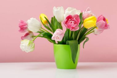 Tender blooming tulips in vase on pink background