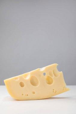 Close up image of maasdam cheese on gray stock vector