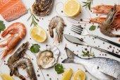 roher Fisch und verschiedene Meeresfrüchte mit Kräutern und Zitronen isoliert auf weiß