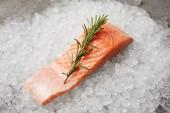 rozmaring ág tört jeget a piros hal szelet